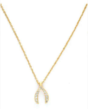 Sea La Vie Wishbone Necklace