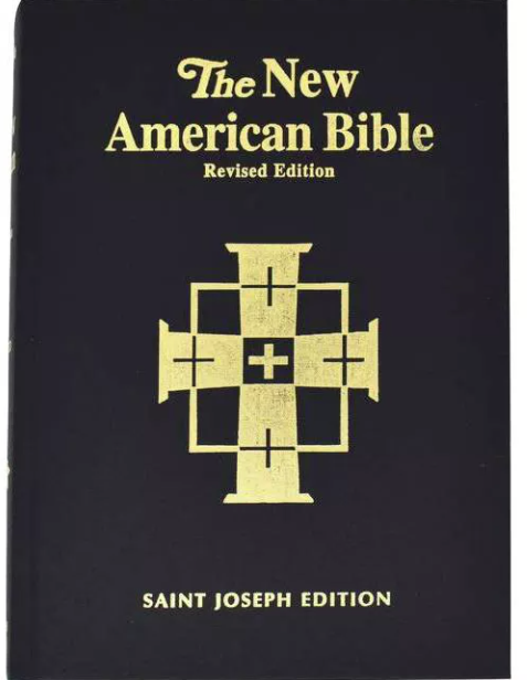 Saint Joseph Bible-NABRE-Large Print-Illustrated Hardcover