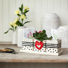 Load image into Gallery viewer, Red Heart Herb Planter Set