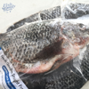 Image of Tilapia (Gutted Weight: 750-850g)