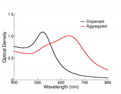 Extinction spectra of dispersed and agglomerated NanoXact gold nanoparticles.
