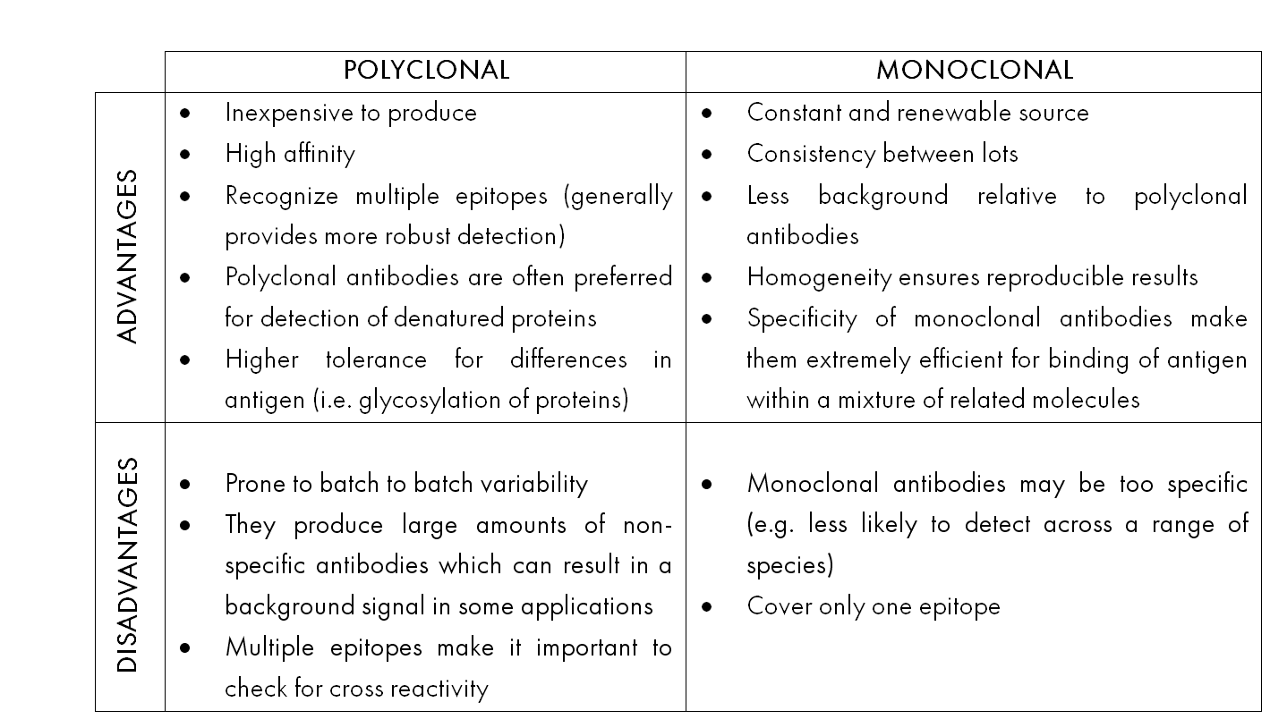 Monoclonal and Polyclonal Advantages and Disadvantages