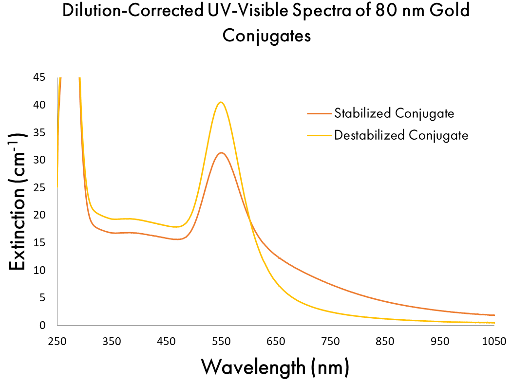 Dilution-Corrected UV-Visible Spectra of 80 nm Gold Conjugates Stabilized and Destabilized