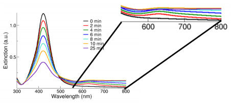 Figure 2: Spectra of silver nanoparticles in the presence of 0.15 M NaCl. Note the formation of a secondary peak between 600 and 700 nm that is indicative of agglomeration.