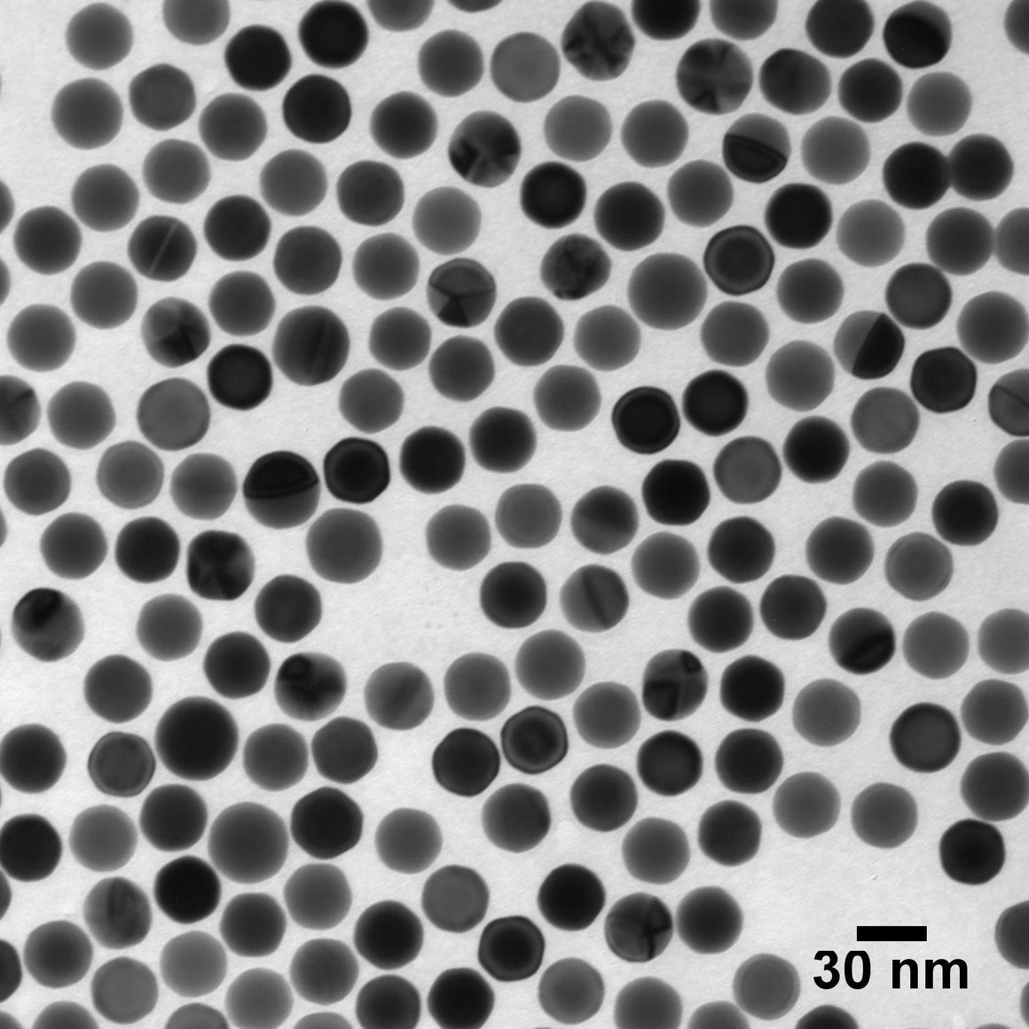 Ultra Uniform Gold Nanospheres – PEG-Carboxyl