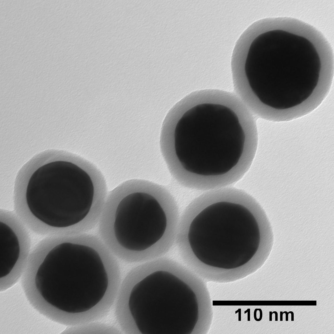 NanoXact Gold Nanospheres – Silica Shelled (Aminated)