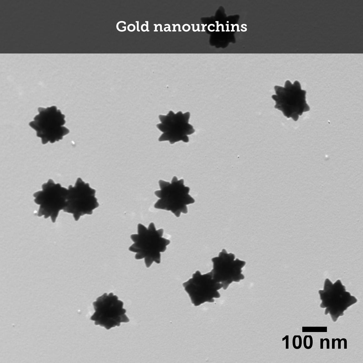 Custom Nanoparticle Synthesis