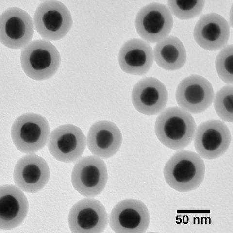 Silica Shelled 20 nm Gold Nanospheres