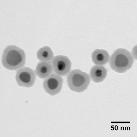 Silica Shelled Silver Nanoplates, Peak Absorbance @ 550 nm