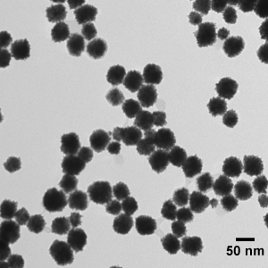 50 nm Platinum Nanoparticles