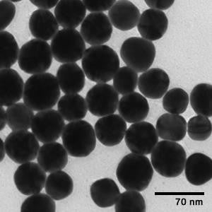 50 nm Gold Nanospheres