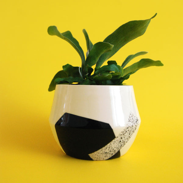 PLANTER ONE // EXPLORATIONS SERIES