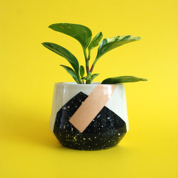 PLANTER TWO // EXPLORATIONS SERIES