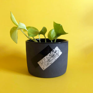 PLANTER FIVE // EXPLORATIONS SERIES