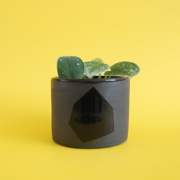 PLANTER SIX // EXPLORATIONS SERIES