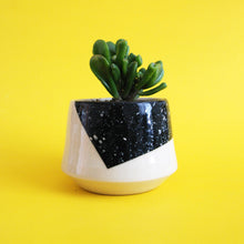 Load image into Gallery viewer, PLANTER EIGHT // EXPLORATIONS SERIES