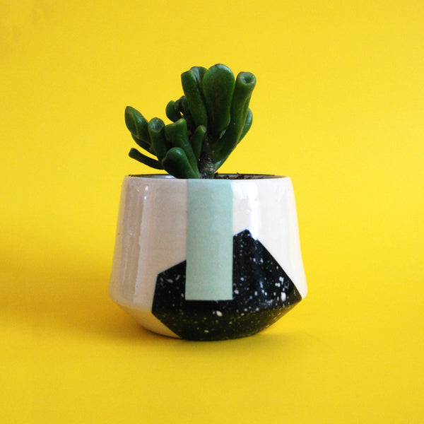 PLANTER EIGHT // EXPLORATIONS SERIES