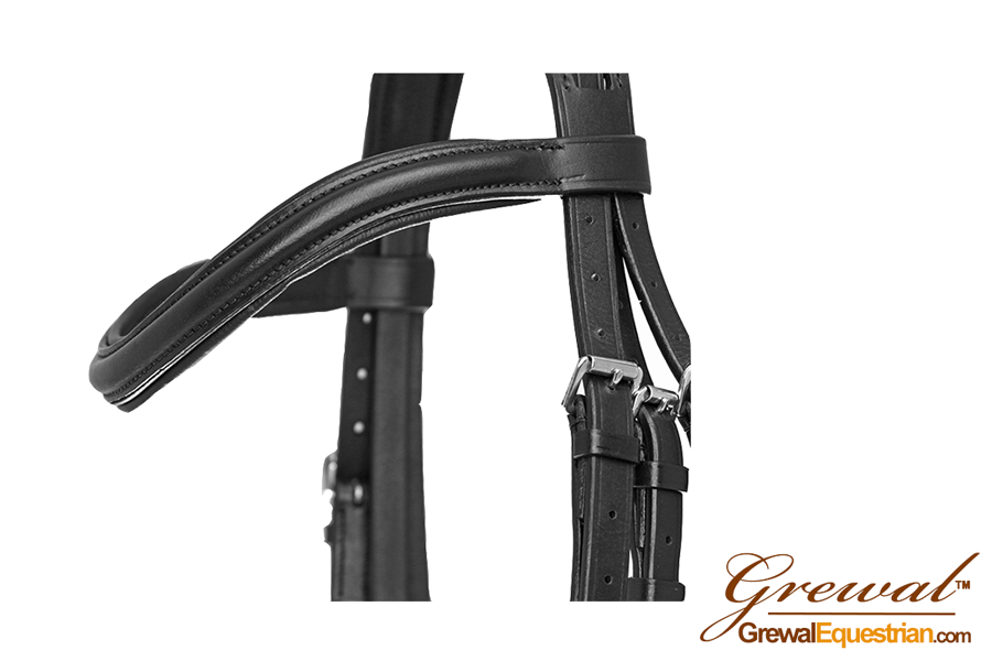 Southport Bridle