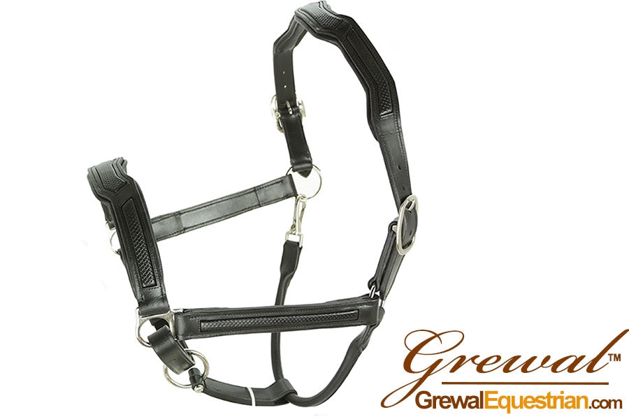 Cobra Leather Halter