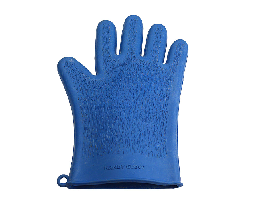 Pacific Blue Handy Grooming Glove
