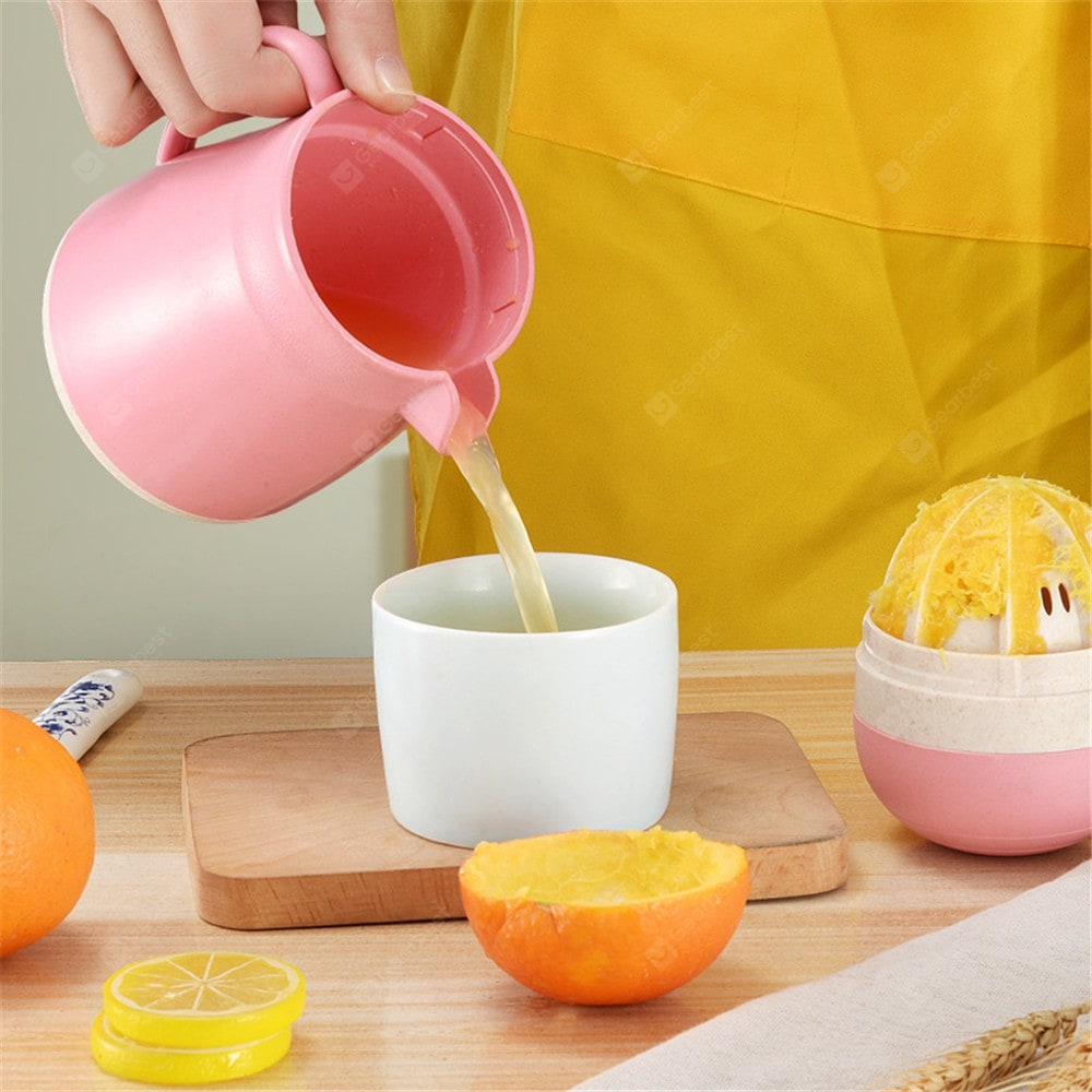 Multifunctional Manual Small Fruit Juicer Other_Kitchen_Accessories