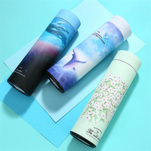 Stainless Steel Vacuum Flask 500ml