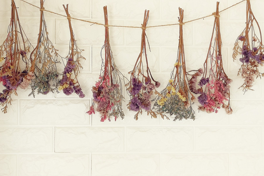Trending Now - Dried Florals
