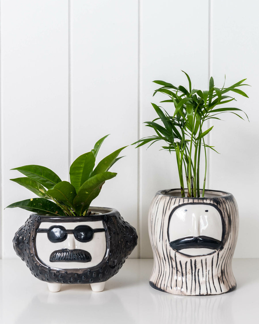 Mr. Merriwether Face Planter