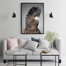 Load image into Gallery viewer, Black Cockatoo Australiana Canvas