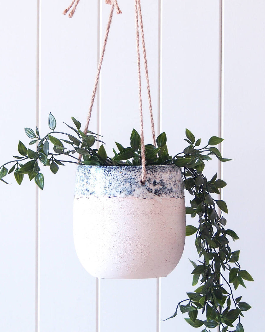 Abelia Hanging Planter Pot