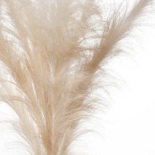 Load image into Gallery viewer, Pampas Grass Spray - Blush Pink