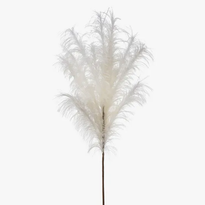 Pampas Grass Spray - Cream