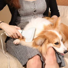 Load image into Gallery viewer, 2 in 1 Pet Grooming Hair Dryer Blower