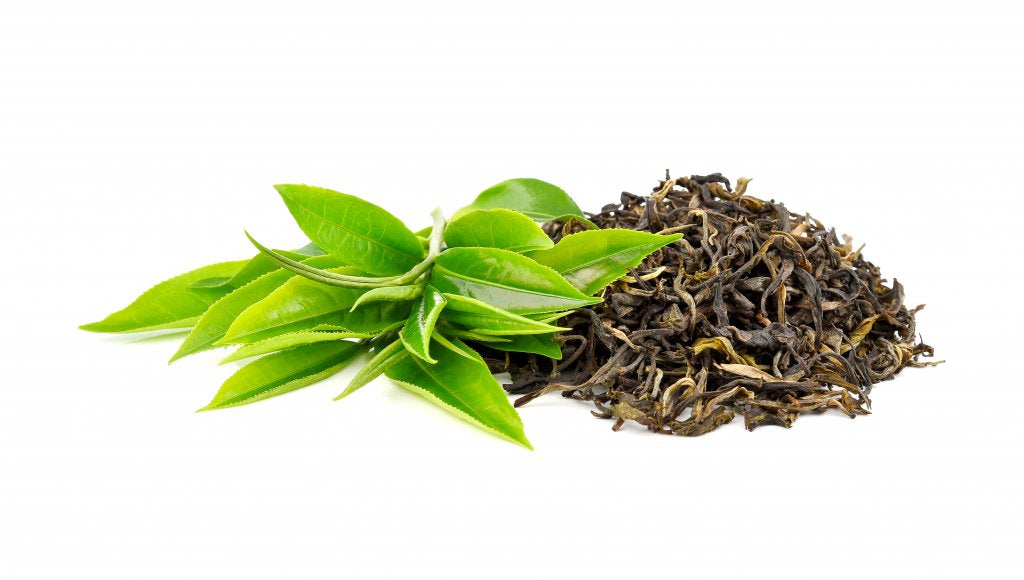 green tea antioxidants are the best for skin care