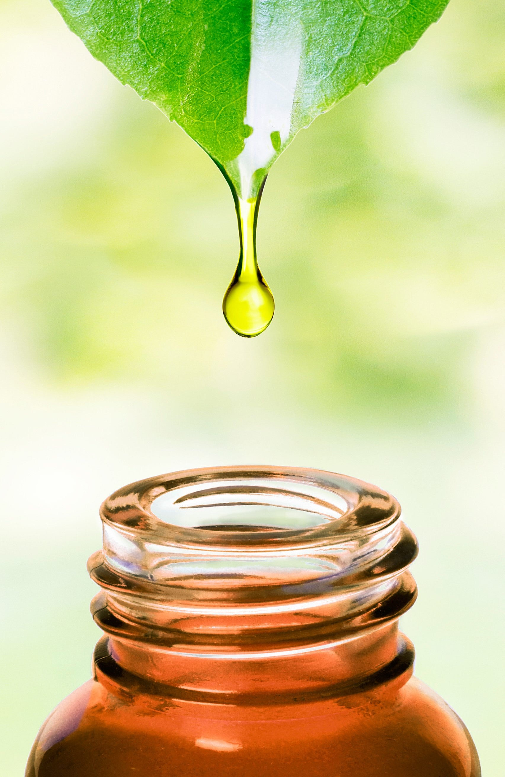 benefits of plant sourced squalane in skin care