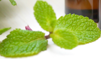heal chapped and dry lips due to mint allergic chelitis