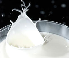dairy foods and acne diet