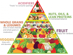 detox cleansing fast Dr. Bailey's Food Pyramid