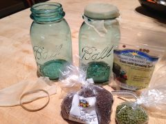 what do you need to make your own sprouts