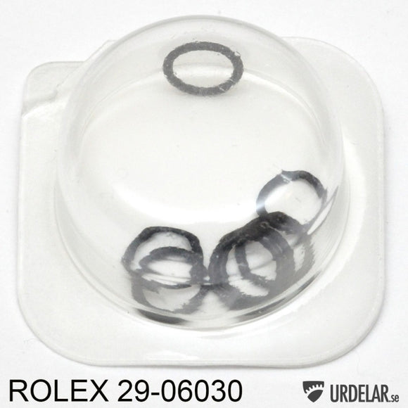 ROLEX 29-06030, Washer for case tube