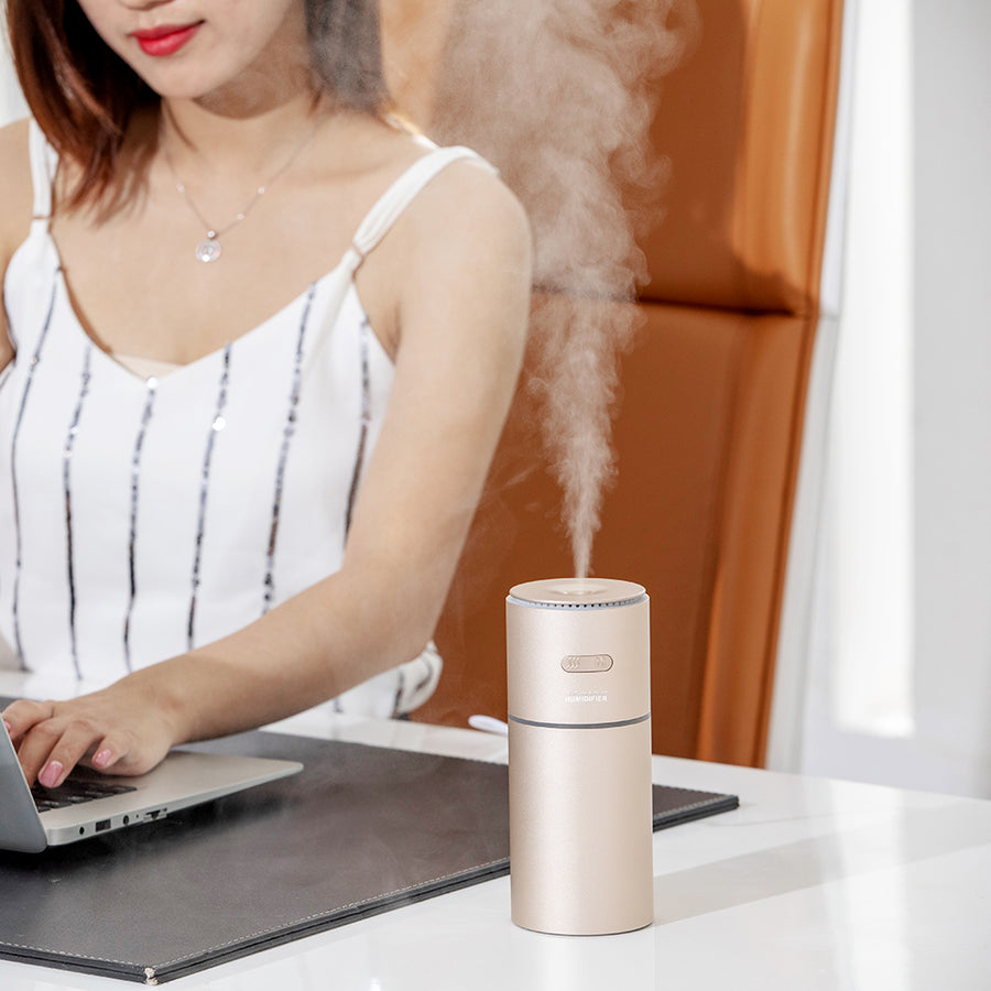 New in 2020 Portable negative ion humidifier