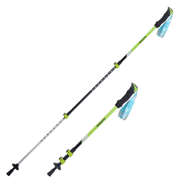 Alpenstock Hiking Cane