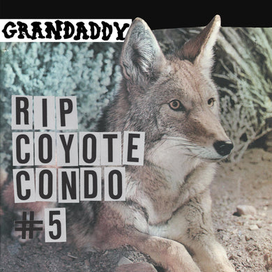 Grandaddy | RIP Coyote Condo #5 b/w The Fox in the Snow and In My Room