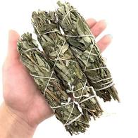 Purple Sage (Lavender Only) Bundle