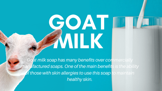Why You Need Goat Milk Products