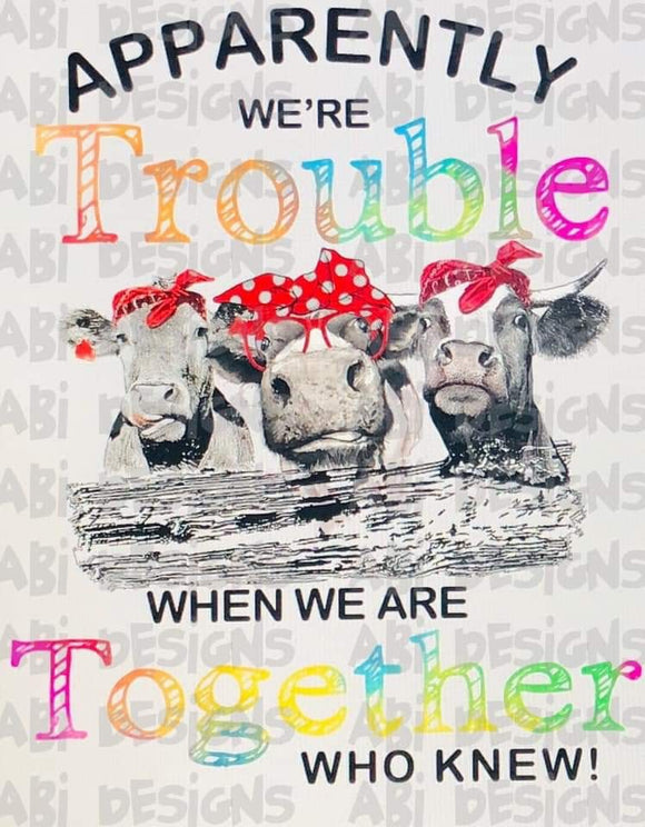 Apparently We Are Trouble -Sublimation