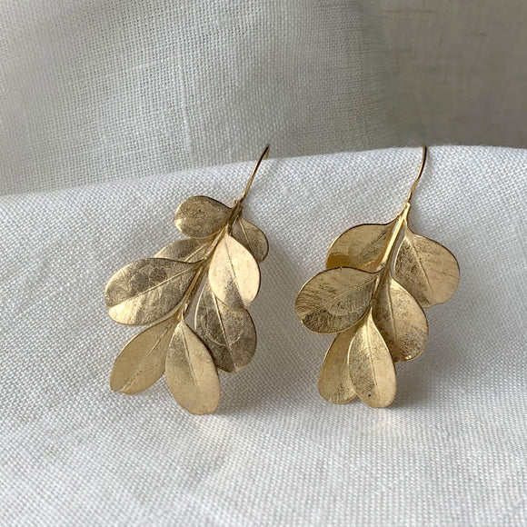 Botanical Box Hedge Cast Earrings