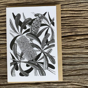 Greeting Card - Coastal Banksia