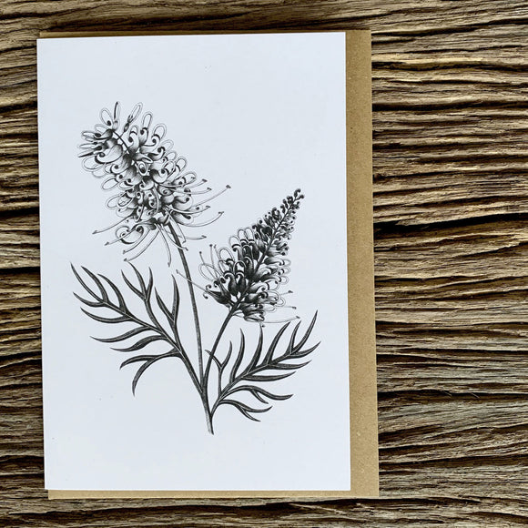 Greeting Card - Grevillea