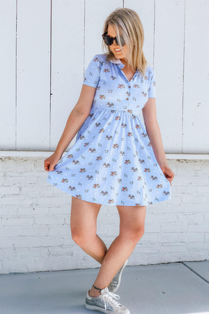 Cakeworthy CINDERELLA'S FRIENDS BUTTON UP DRESS